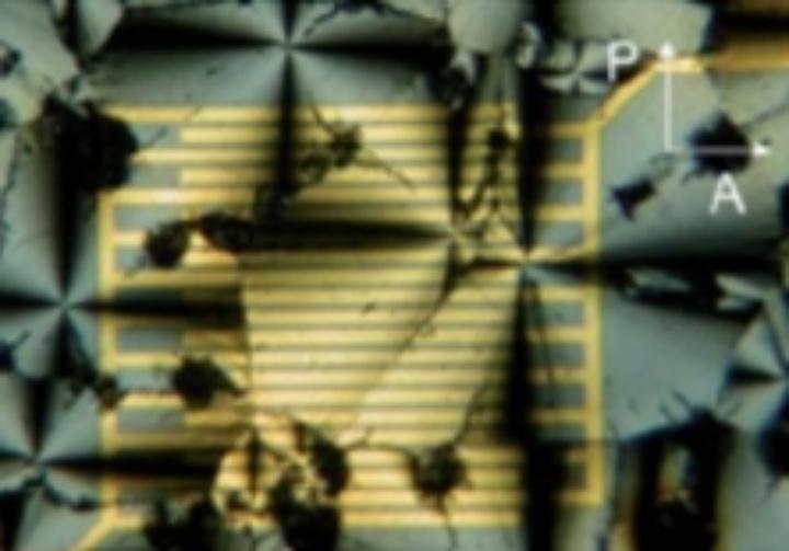 Liquid crystal on interdigitating electrodes (c)