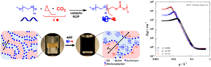mPEG-b-PBC block copolymers and their boosting effect with SANS curves (c)