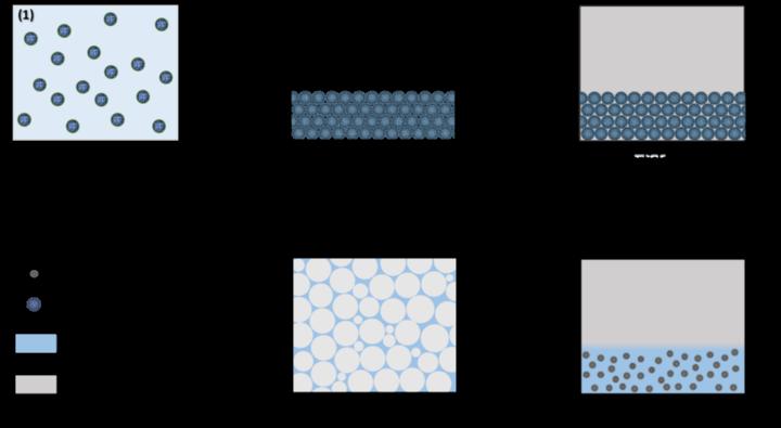 Scheme of the NF-CID Principle (c)