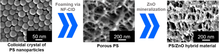 SEM images - synthesis of hybrid materials from colloidal particles (c)